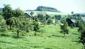 Obsthof