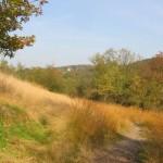 Volbachtal im Herbst